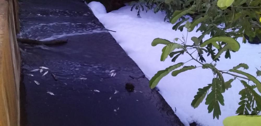 Passagem molhada que dá acesso a Loc. Coqueiro (Foto: Oeiras em Foco)