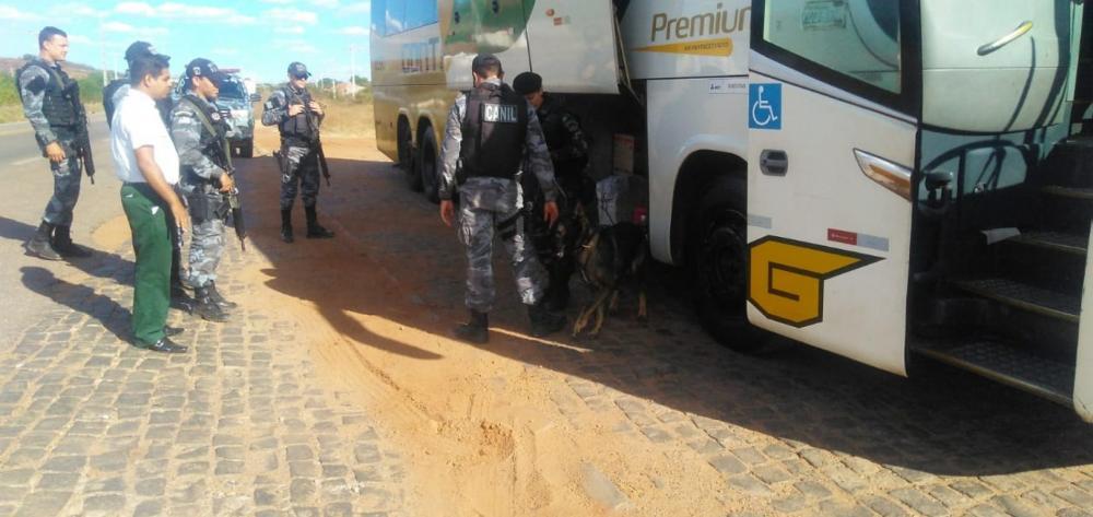 Operação Picos Segura param ônibus (Foto: Divulgação PM)